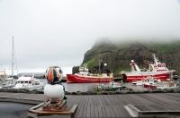 022Rundreise-Island-Westmänner