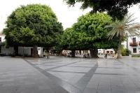 49Llanos Plaza