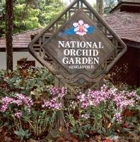 50Botanischer Garten