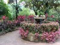51Botanischer Garten