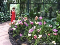 52Botanischer Garten