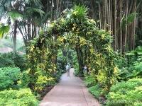 54Botanischer Garten